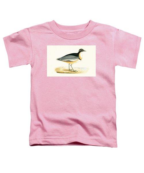Black Headed Plover Toddler T-Shirt
