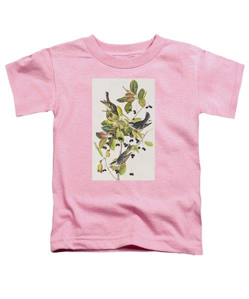 Black Poll Warbler Toddler T-Shirt by John James Audubon