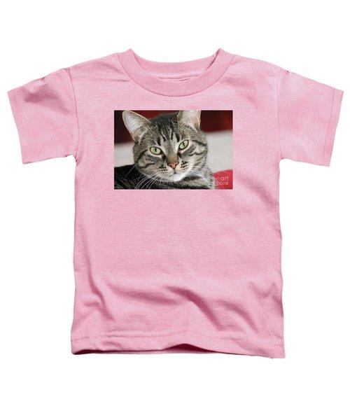 Black Tabby Toddler T-Shirt