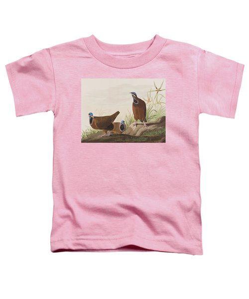 Blue Headed Pigeon Toddler T-Shirt by John James Audubon