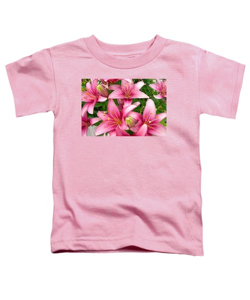 Blush Of The Blossoms Toddler T-Shirt