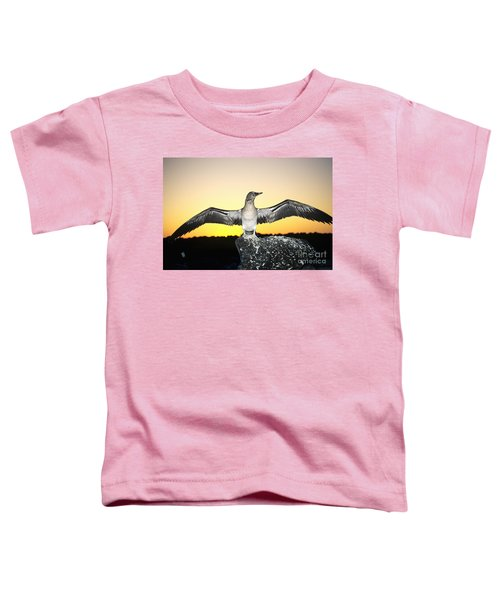 Booby At Sunset Toddler T-Shirt by Dave Fleetham - Printscapes