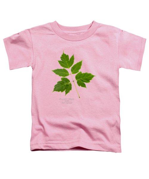 Box Elder Maple Leaf Toddler T-Shirt