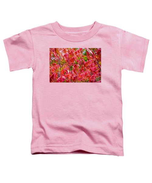 Bright Red Leaves Toddler T-Shirt