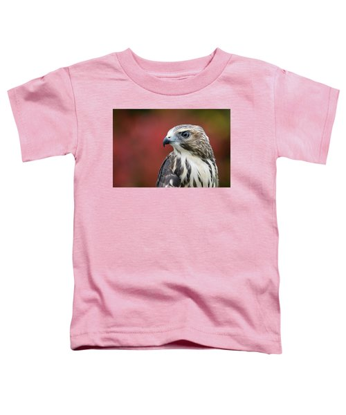 Broad Wing Hawk Toddler T-Shirt