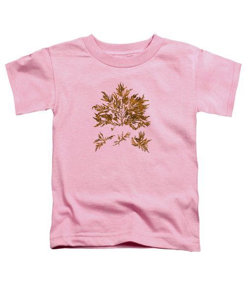 Toddler T-Shirt featuring the mixed media Brown Seaweed Marine Art Chylocladia Clavellosa by Christina Rollo