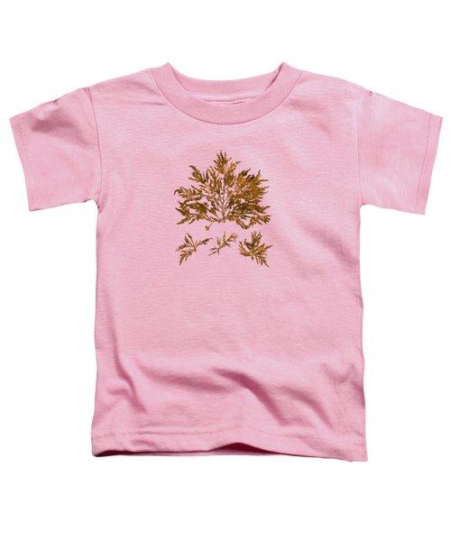 Brown Seaweed Marine Art Chylocladia Clavellosa Toddler T-Shirt