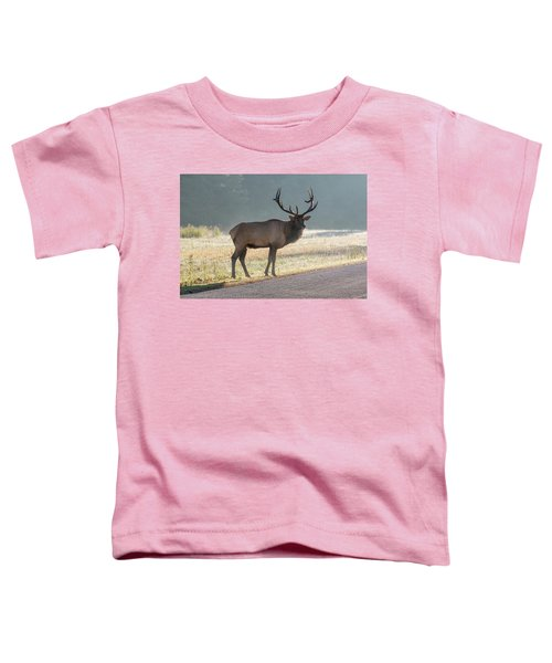 Bull Elk Watching Toddler T-Shirt