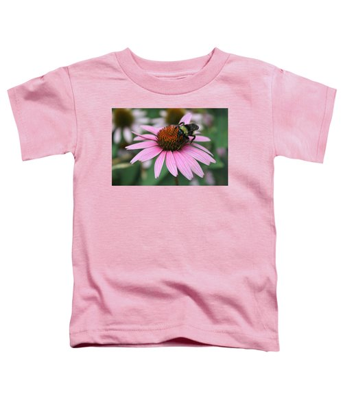 Bumble Bee On Pink Coneflower Toddler T-Shirt