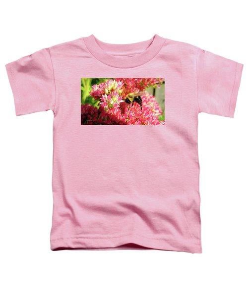 Buzy Bee Toddler T-Shirt