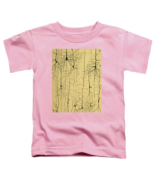 Cajal Drawing Of Microscopic Structure Of The Brain 1904 Toddler T-Shirt