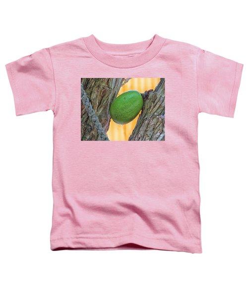 Calabash Fruit Toddler T-Shirt