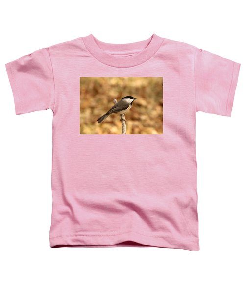 Carolina Chickadee On Branch Toddler T-Shirt