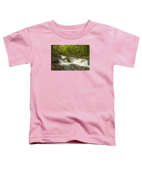Cascades On The Brooks Falls Trail Toddler T-Shirt
