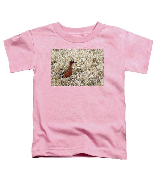 Cinnamon Teal Toddler T-Shirt
