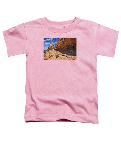 Citadel House Toddler T-Shirt