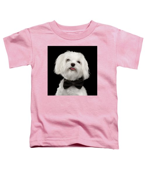 Closeup Portrait Of Happy White Maltese Dog With Bow Looking In Camera Isolated On Black Background Toddler T-Shirt