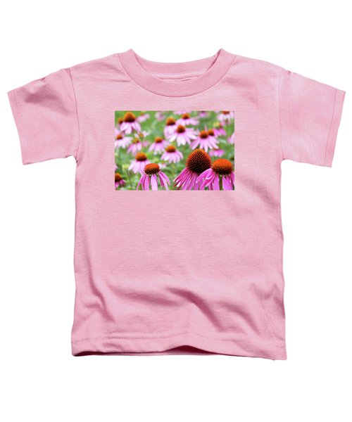 Coneflowers Toddler T-Shirt by David Chandler