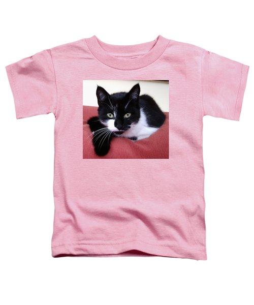 Cute Cat Toddler T-Shirt