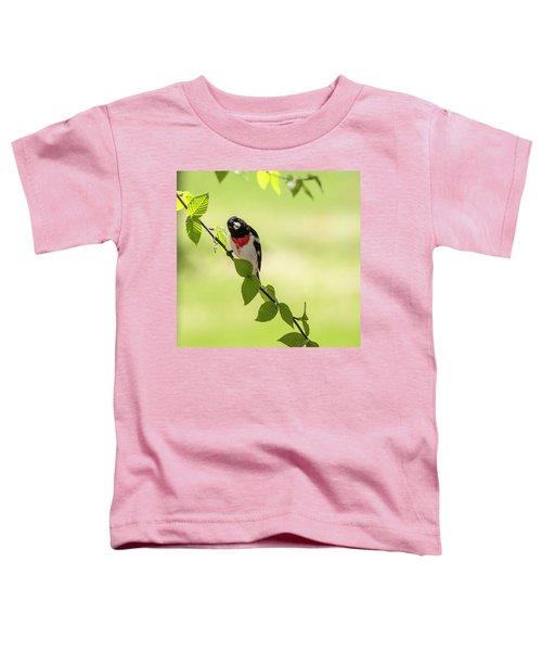 Cute Rose-breasted Grosbeak Toddler T-Shirt