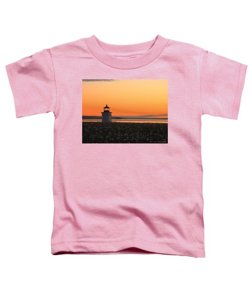 Dandelions At Sunrise Toddler T-Shirt