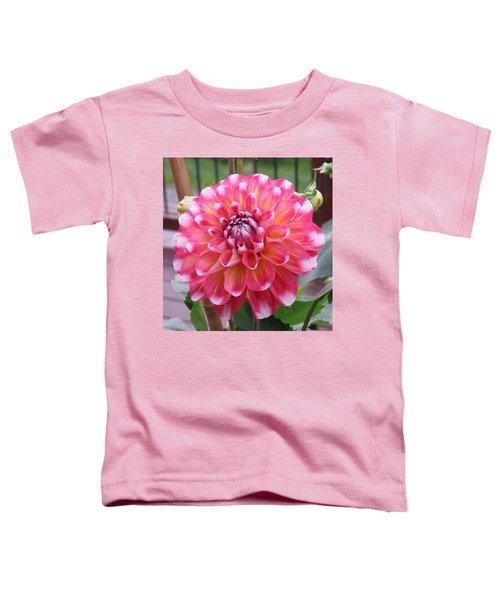 Denali Dahlia Toddler T-Shirt