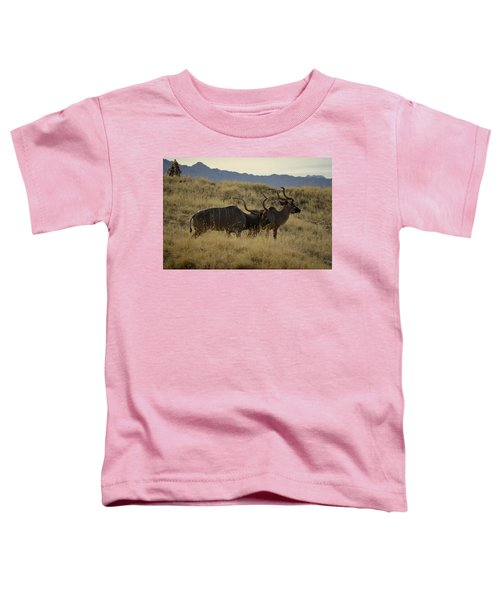 Desert Palm Landscape Toddler T-Shirt