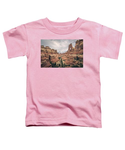 Druid Arch Toddler T-Shirt