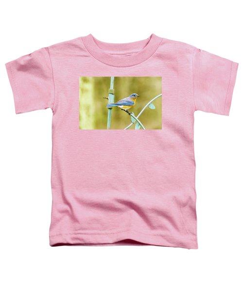 Eastern Bluebird Toddler T-Shirt