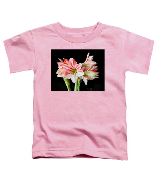 Fairyland Amaryllis  Toddler T-Shirt