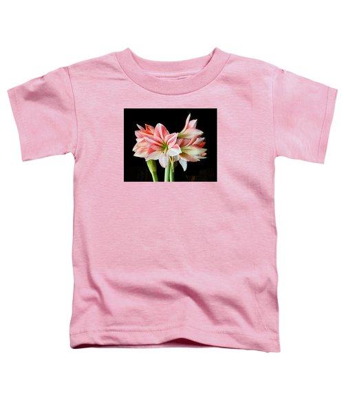 Fairyland Amaryllis  Toddler T-Shirt