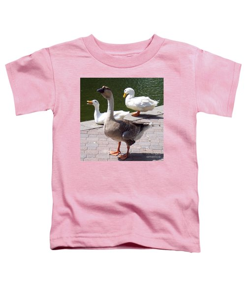 Feathered Friends Toddler T-Shirt