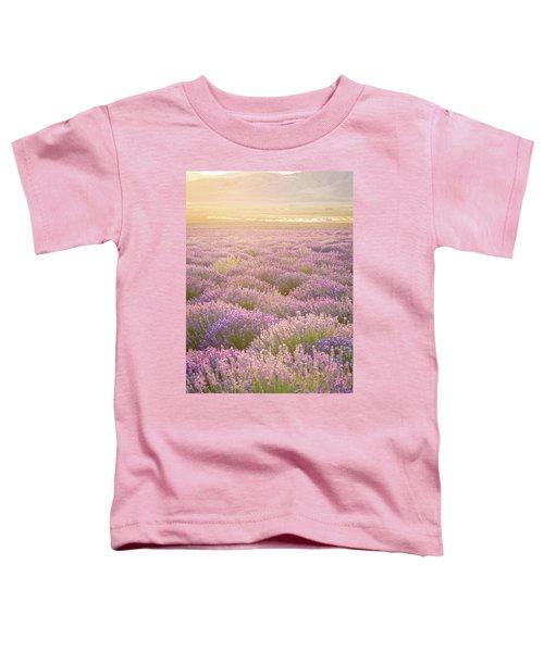 Fields Of Lavender Toddler T-Shirt