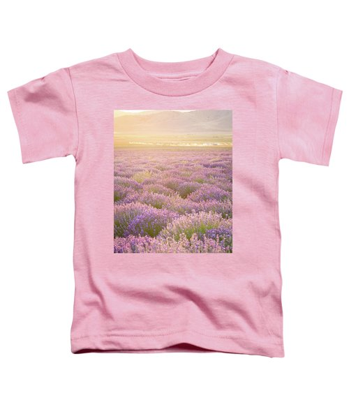 Fields Of Lavender Toddler T-Shirt