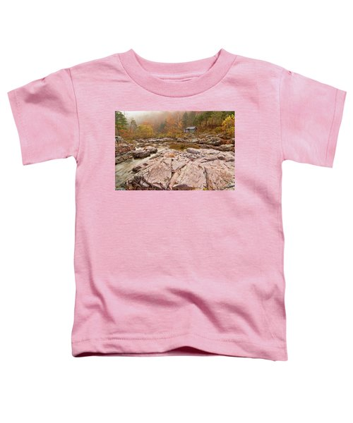 Foggy Morning At Klepzig Mill Toddler T-Shirt