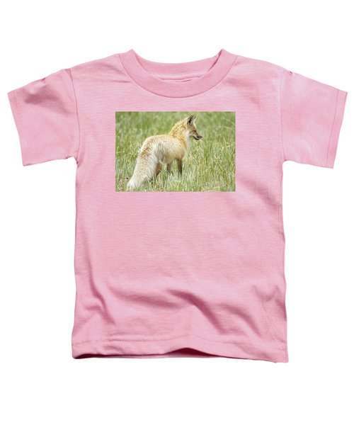 Foxy Lady Toddler T-Shirt