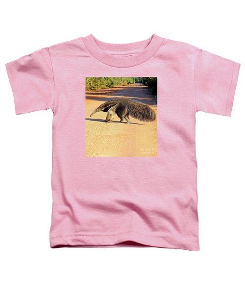 Giant Anteater Crosses The Transpantaneira Highway In Brazil Toddler T-Shirt