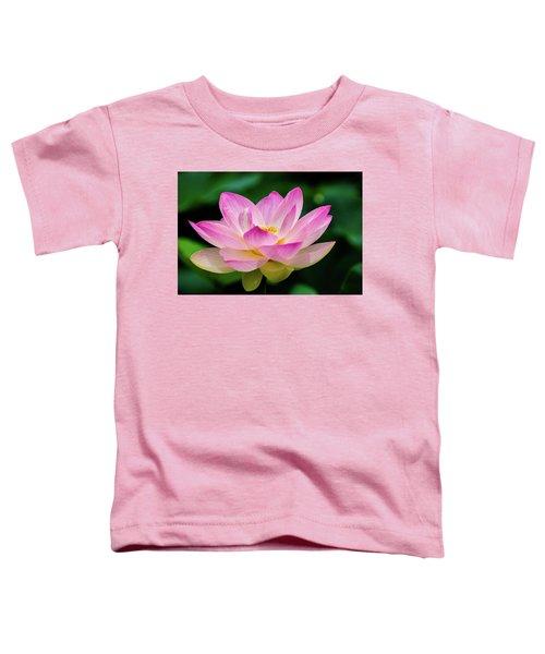 Gigantic Lotus Red Lily Toddler T-Shirt