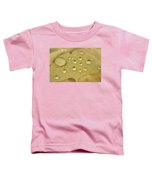 Ginkgo Balls Toddler T-Shirt