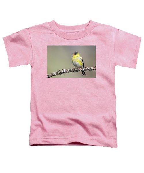 Gold Finch Toddler T-Shirt
