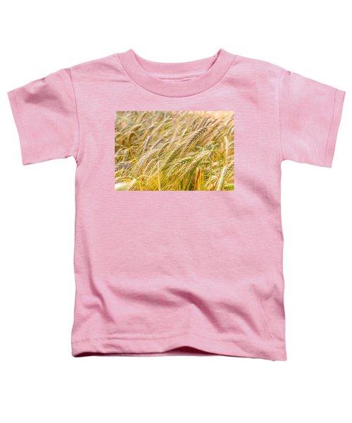 Golden Barley. Toddler T-Shirt