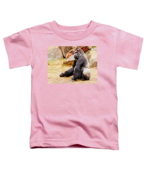 Gorilla Sitting Upright Toddler T-Shirt