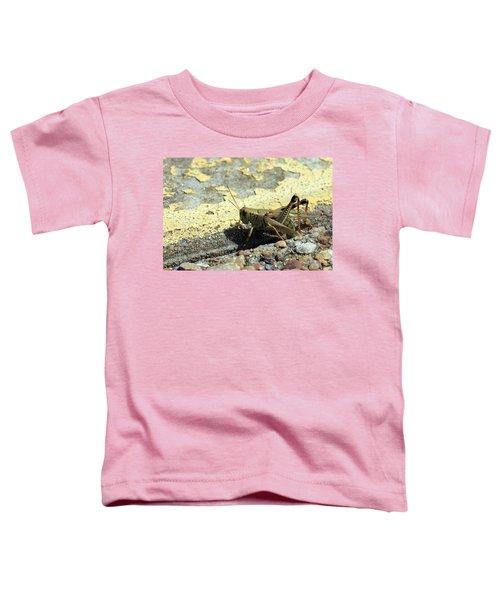 Grasshopper Laying Eggs Toddler T-Shirt
