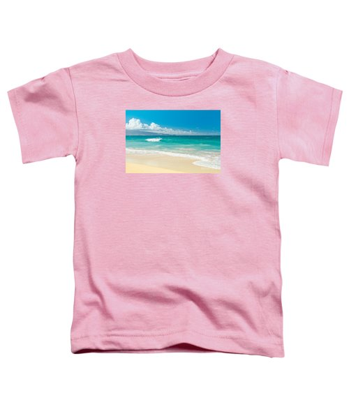 Hawaii Beach Treasures Toddler T-Shirt