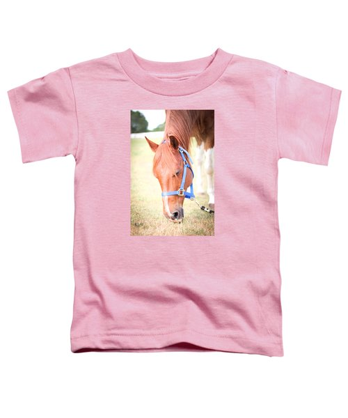 Horse Eating In A Pasture In Vibrant Color Toddler T-Shirt