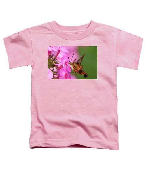 Hummingbird Moth Feeding 1 Toddler T-Shirt