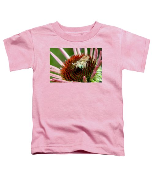 Jumping Spider With Green Weevil Snack Toddler T-Shirt