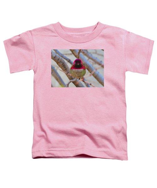 Little Jewel All Aglow Toddler T-Shirt