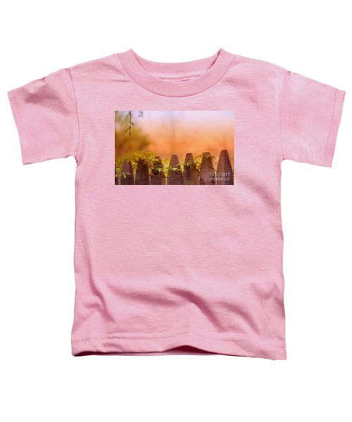 Look Beyond The Boundary Toddler T-Shirt