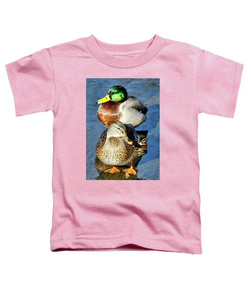 Mallard Couple Toddler T-Shirt